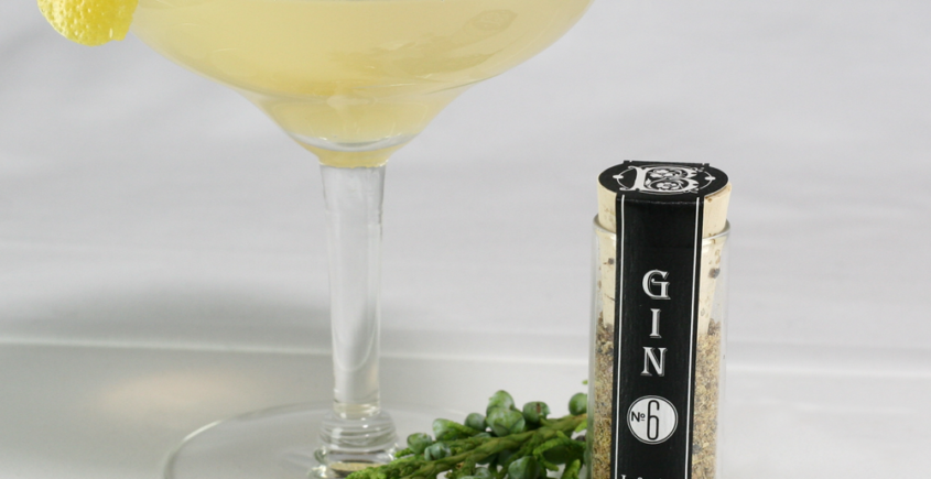 bathtub-gin-no-6-vodka-infusion