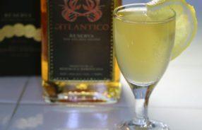 Boston Cooler AKA Medford Rum Sour Cocktail