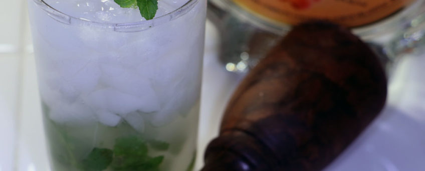 The Brandy Julep