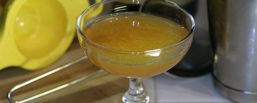 Bronx River Cocktail